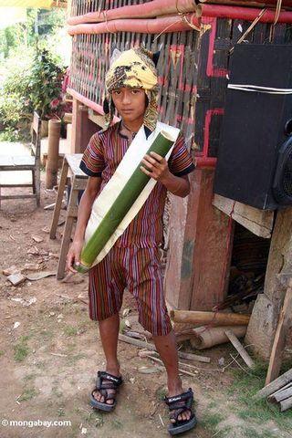 Vin de palme dans un tube en bambou