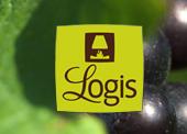 Logis Bacchus